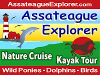 Assateague Explorer banner