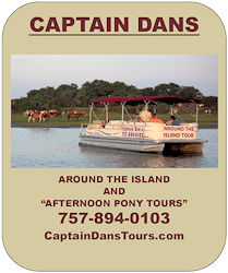 captain dan's cruises banner