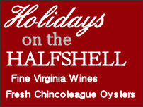 Holidays on the Halfshell banner