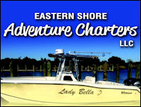 eastern shore adventure charters banner ad