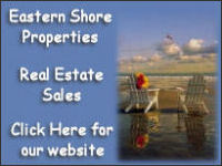 eastern shore properties banner